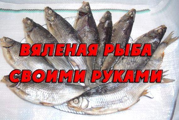 Как сделать вяленую рыбу