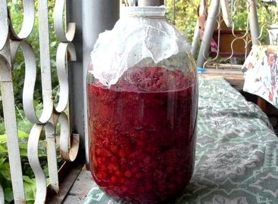 Рецепт приготовление малинового вина в домашних условиях